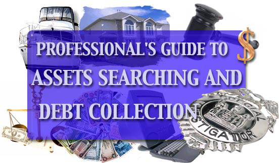 PROFESSIONALS GUIDE TO ASSETS SEARCHING AND DEBT COLLECTION